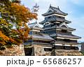 長野県松本市 紅葉時期の松本城 65686257