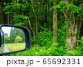 森林の中をドライブ イメージ 65692331
