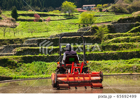 棚田百選の井仁の棚田風景です。老人の方が田植の準備作業をしています。広島県 65692499