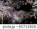 平安神宮 - 紅しだれコンサート  65715826