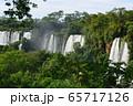 イグアスの滝  65717126