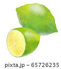 水彩タッチなグリーンレモン 65726235