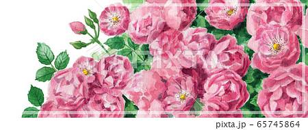 ブログ用ヘッダ画像ピンクのバラ 65745864