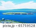 夢洲(大阪市此花区) 65759528