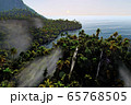 Paradise on Hawaii Island 3d rendering 65768505