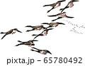 浮世絵 鳥 その23 65780492