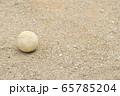 野球のボール(軟式ボール) 65785204