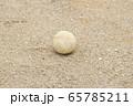 野球のボール(軟式ボール) 65785211