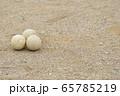 野球のボール(軟式ボール) 65785219