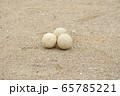 野球のボール(軟式ボール) 65785221