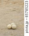 野球のボール(軟式ボール) 65785223