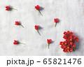 赤い花 65821476