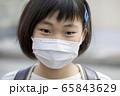 マスク姿の小学生 通学 登校 65843629