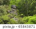 天狗岩(和歌山県海草郡紀美野町) 65843871