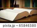 辞書 辞典 広辞苑 紙製 アナログ 出版物 国語辞典 本棚 65846380