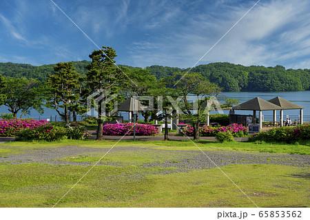 ツツジ咲くころの狭山湖 青空とツツジ咲く南岸の東屋 65853562