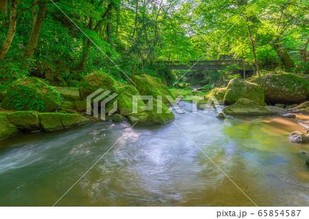 王滝渓谷 渓流 新緑 スローシャッター 【愛知県】 65854587