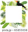 ジャングル フレーム サイチョウ【マレーシア ボルネオ】 65855038