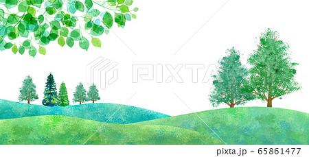 新緑の平原の風景、水彩イラスト 65861477