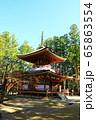 秋の高野山 壇上伽藍 東塔  65863554