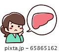 健康を悩む女性 吹き出し 内臓 肝臓 65865162