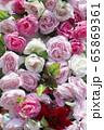 自然 ピンク 春 65869361