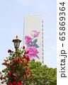 自然 花 景色 65869364