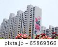 バラ 花 自然 65869366