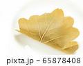 柏餅。(白皿・白バック) 65878408