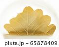 柏餅。(白皿・白バック) 65878409