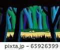 森の道イメージ 65926399