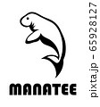 Black line art Vector illustration on a white background of a manatee. Suitable for making logo. 65928127