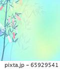 背景-七夕まつり 65929541