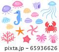 海の生き物のイラストセット 65936626