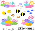 サンゴ礁と熱帯魚のイラストセット 65944991