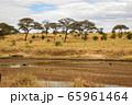 タンザニア・タランギーレ国立公園の干上がった川と、雲の隙間から見える青空 65961464