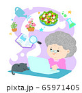 Grandmother using laptop search for information on 65971405
