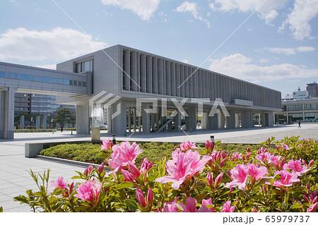 広島平和記念資料館とツツジ 65979737