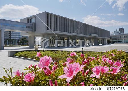 広島平和記念資料館とツツジ 65979738
