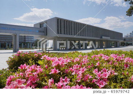 広島平和記念資料館とツツジ 65979742