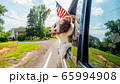 Traveling pets look out the window of a car with a U.S. flag nearby 65994908