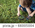 Happy little boy exploring nature with magnifying 66005004