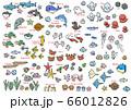 夏の海のイラスト3 66012826