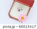 指輪 ダイヤモンド ルビー 66015417