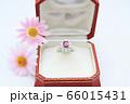指輪 ダイヤモンド ルビー 66015431