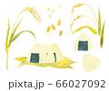 お米 稲 おにぎり ベクターイラスト(水彩) 66027092