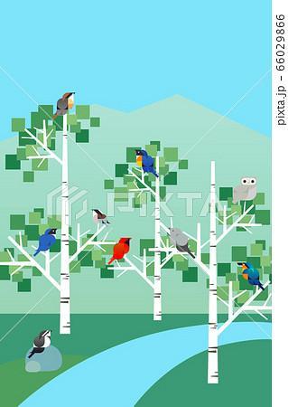 夏の鳥たちのいる涼しい木陰の風景, 幾何学フラットデザイン 66029866