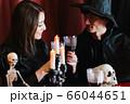 ハロウィン ホームパーティー デート 66044651
