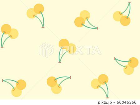 黄色いサクランボ 66046566