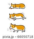 犬 コーギー 具合が悪い 66050718